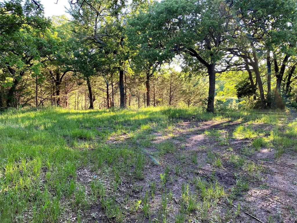 717 Briaroaks  Road, Burleson, Texas 76028 - acquisto real estate best allen realtor kim miller hunters creek expert
