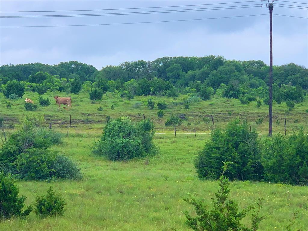 1 CR 103  Burnet, Texas 78611 - acquisto real estate best prosper realtor susan cancemi windfarms realtor