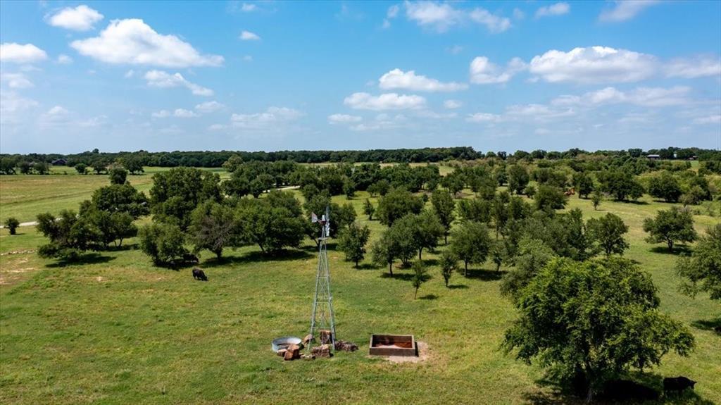 1770 Doss  Road, Millsap, Texas 76066 - acquisto real estate best celina realtor logan lawrence best dressed realtor