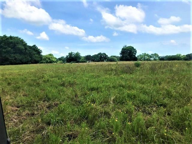 741 VZ County Road 1222 S  Grand Saline, Texas 75140 - acquisto real estate smartest realtor in america shana acquisto