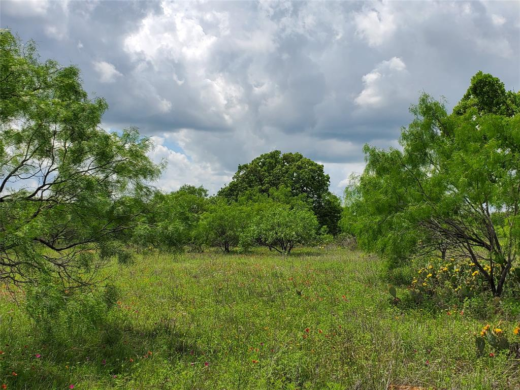6153 Farm To Market Road 502  Rochelle, Texas 76871 - acquisto real estate best plano real estate agent mike shepherd