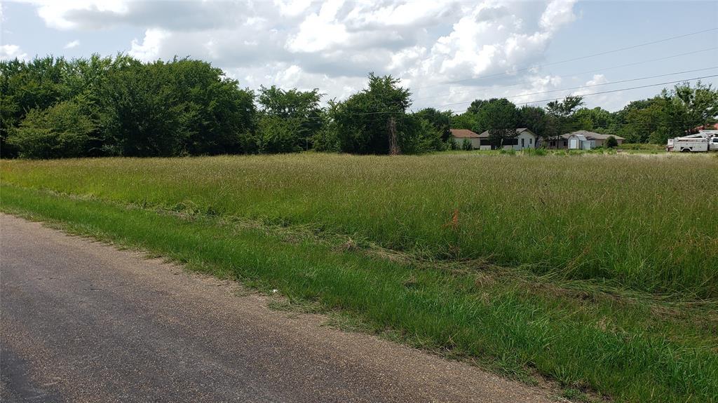 TBD Loon Bay  Drive, Gun Barrel City, Texas 75156 - acquisto real estate best highland park realtor amy gasperini fast real estate service