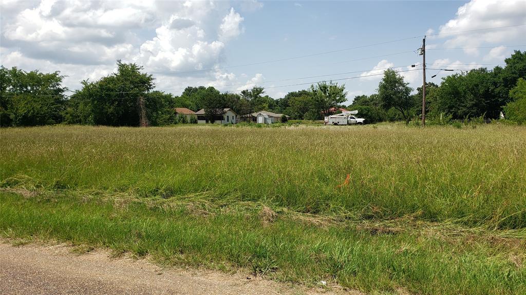 TBD Loon Bay  Drive, Gun Barrel City, Texas 75156 - acquisto real estate best allen realtor kim miller hunters creek expert