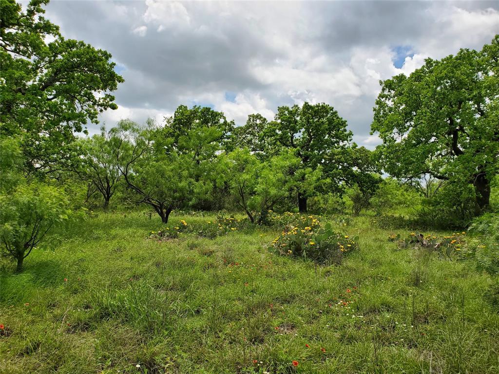 6153 Farm To Market Road 502  Rochelle, Texas 76871 - acquisto real estate best photo company frisco 3d listings
