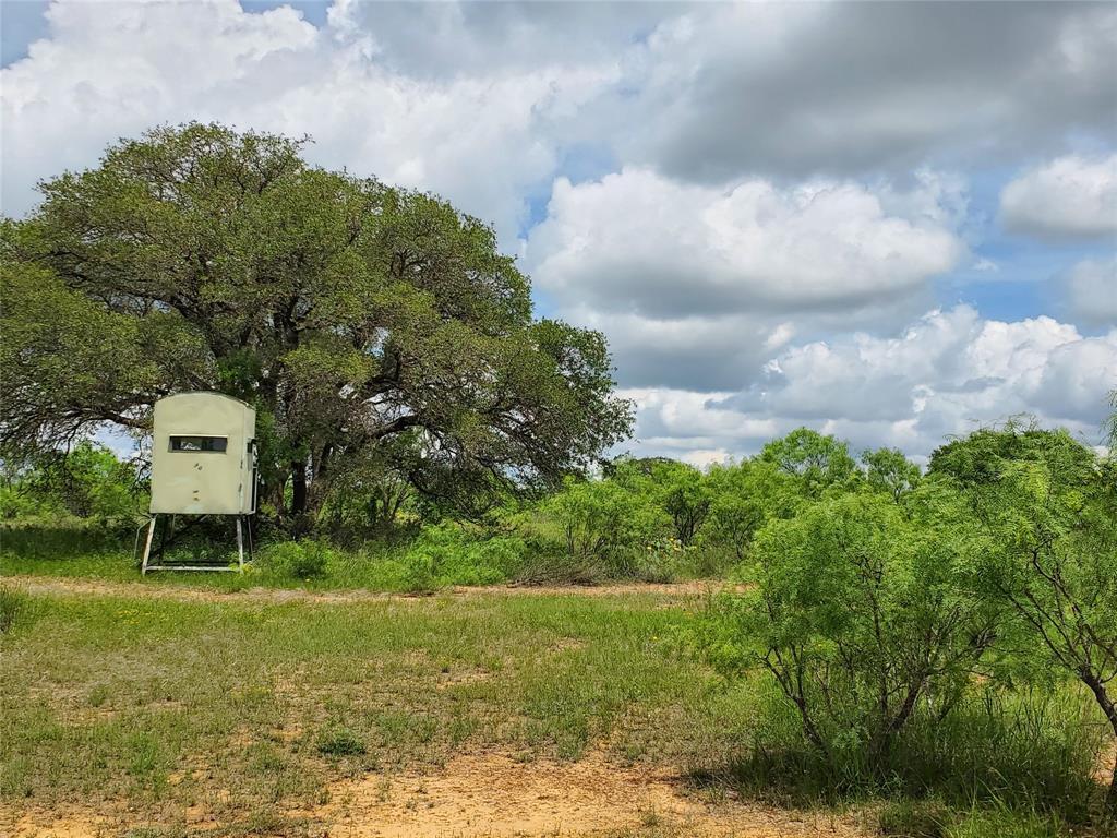 6153 Farm To Market Road 502  Rochelle, Texas 76871 - acquisto real estate smartest realtor in america shana acquisto