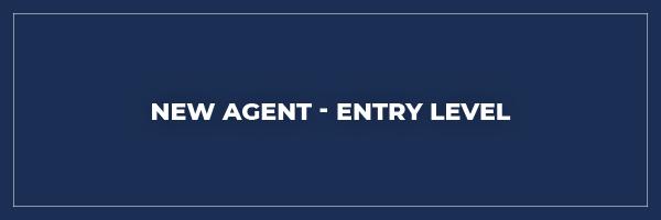 53761ea8 new agent