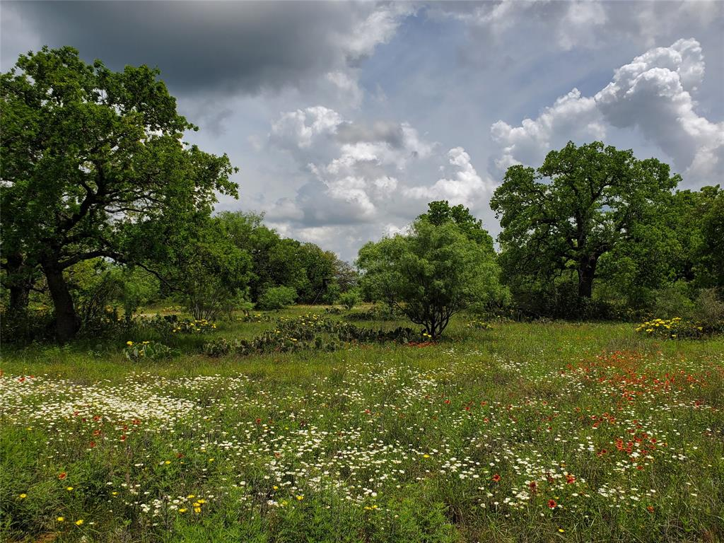 6153 Farm To Market Road 502  Rochelle, Texas 76871 - acquisto real estate best luxury buyers agent in texas shana acquisto inheritance realtor