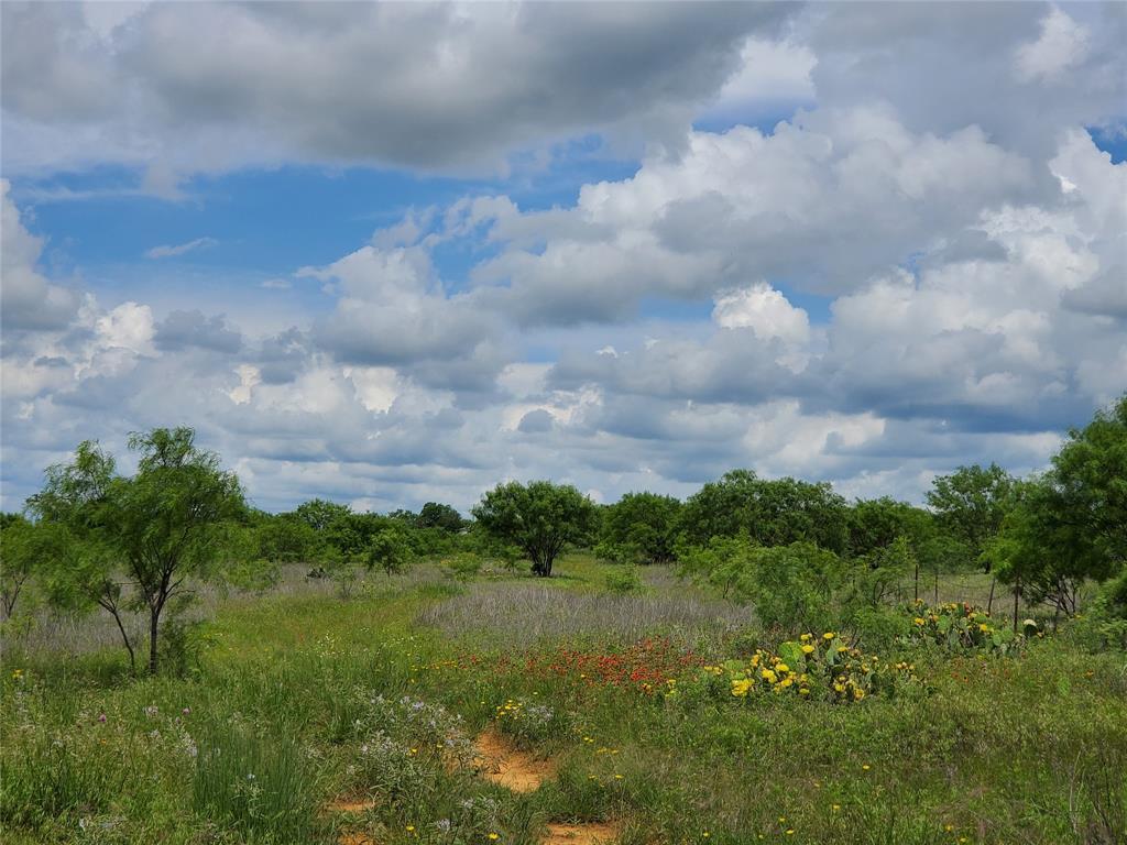 6153 Farm To Market Road 502  Rochelle, Texas 76871 - acquisto real estate best relocation company in america katy mcgillen