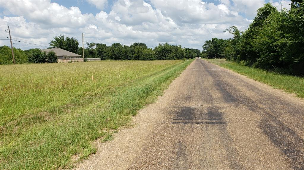 TBD Loon Bay  Drive, Gun Barrel City, Texas 75156 - acquisto real estate best prosper realtor susan cancemi windfarms realtor