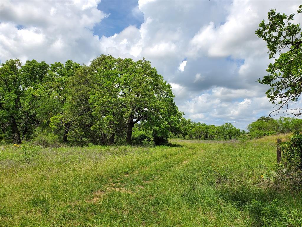 6153 Farm To Market Road 502  Rochelle, Texas 76871 - acquisto real estate best realtor foreclosure real estate mike shepeherd walnut grove realtor