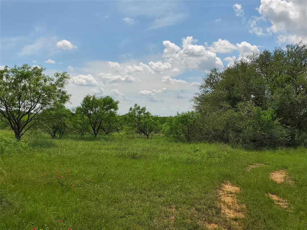 6153 Farm To Market Road 502  Rochelle, Texas 76871 - acquisto real estate best real estate follow up system katy mcgillen