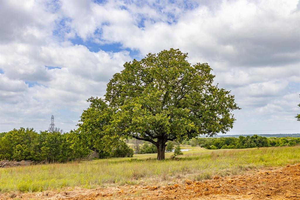 511 Old Agnes  Road, Weatherford, Texas 76088 - acquisto real estate best new home sales realtor linda miller executor real estate