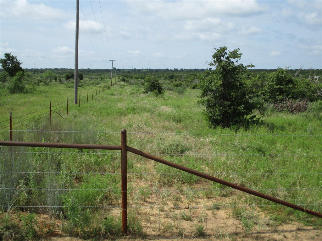 10 AC Birdwell  Bryson, Texas 76427 - acquisto real estate best celina realtor logan lawrence best dressed realtor