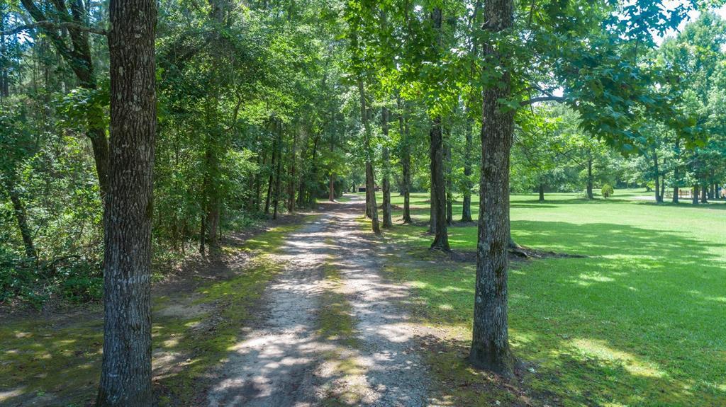544 County Road 3202  Jacksonville, Texas 75766 - Acquisto Real Estate best mckinney realtor hannah ewing stonebridge ranch expert