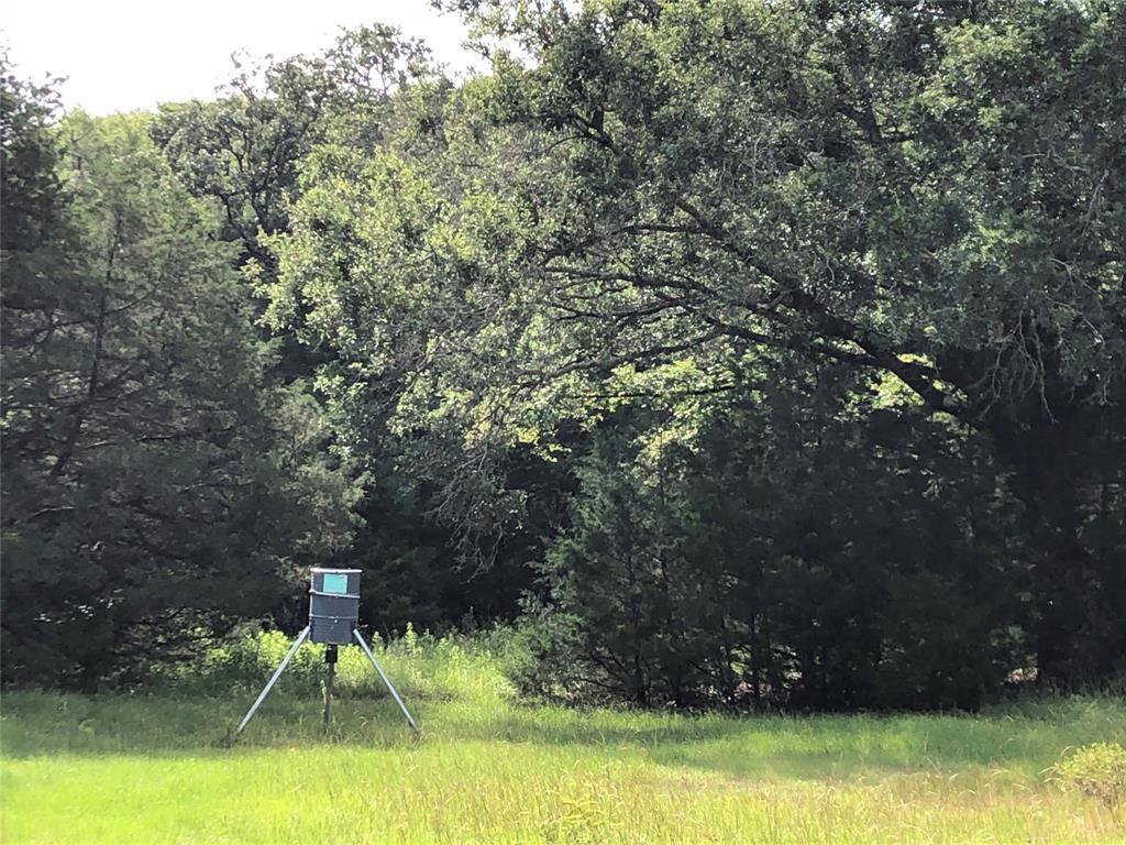 TBD FCR 1130  Fairfield, Texas 75840 - acquisto real estate best prosper realtor susan cancemi windfarms realtor
