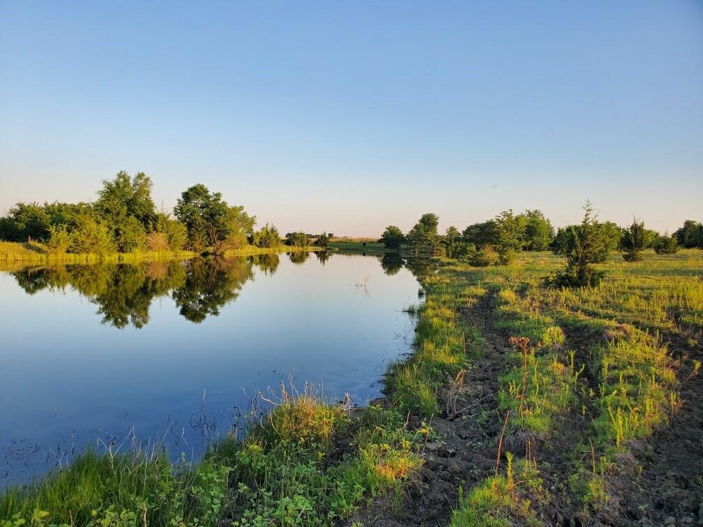 3203 County Road 3489  Honey Grove, Texas 75446 - acquisto real estate best allen realtor kim miller hunters creek expert