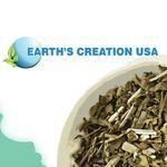 Amanacarekw Earth Creation USA