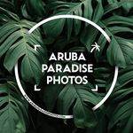 Aruba Paradise Photos 🌴
