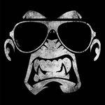 Bad Monkey - מותג בגדים אורבני