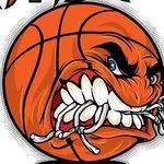 NBA/College Basketball