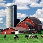 Wisconsin Pics