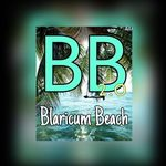 Blaricum Beach