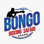 Bongo Boxing Safari