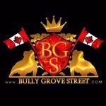 @bullygrovestreet_exotics2