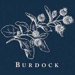 Burdock London