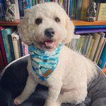 Casper Simpson