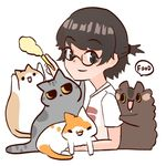 揉一個貓飯團