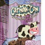 CATWALK COW 🐄