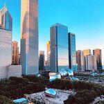 C'monBoard Chicago
