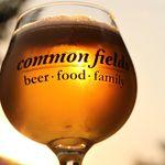 Common Fields