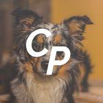 Constant Pets