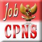 CPNS & BUMN