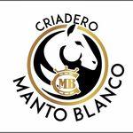 Criadero Manto Blanco