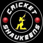 Cricket Shaukeens