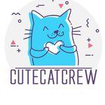 Cute cats & kittens
