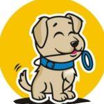 Golden Retriever | Dog
