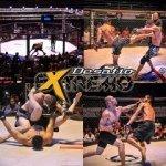 DESAFIO EXTREMO MMA