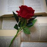 Martina,lettrice per passione