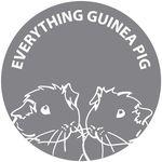 Everything Guinea Pig