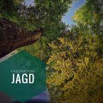 Jagd & Hege im Thüringer Wald