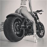 The Fatass-Harley World