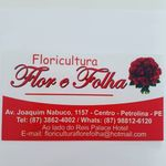 Floricultura Flor e Folha