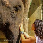 Sri Lanka Travel | France