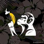Gat Monkey