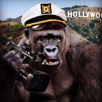 Gorilla Flicks
