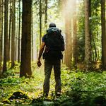 GoToForest Outdoor Photography
